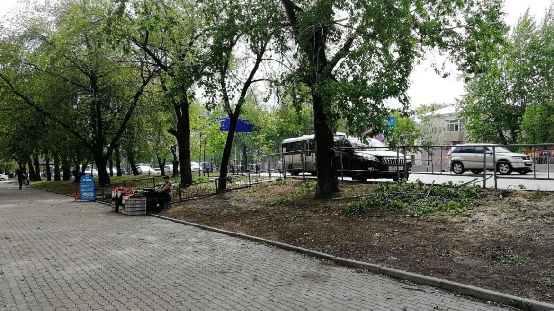 Общегородской субботник в городе Хабаровск пройдет 18 мая