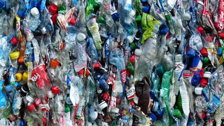 Выпуск рюкзаков из пластиковых бутылок собранных в Хабаровске