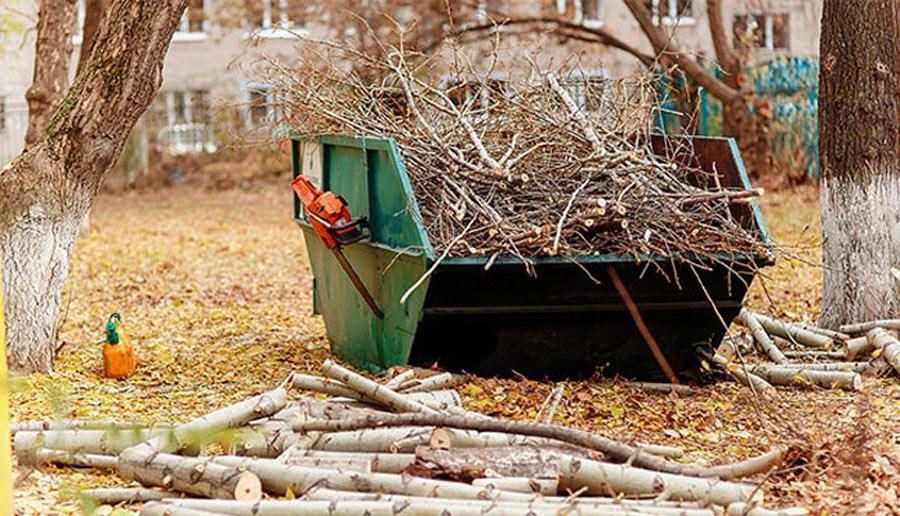 Вывоз веток и спиленных деревьев