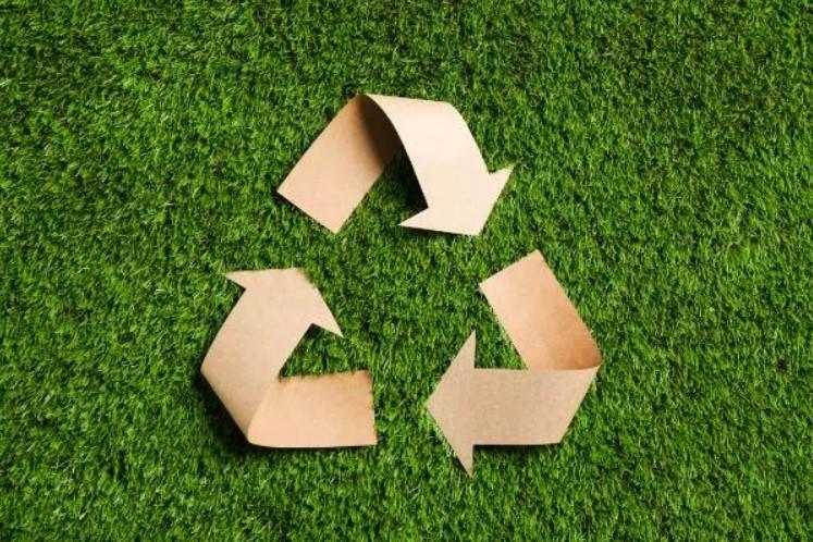 В России могут ввести обязательные стандарты биоразлагаемой упаковки