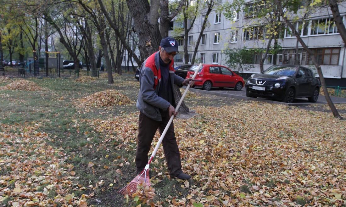 Осенний общекраевой субботник